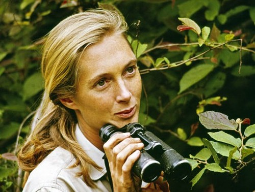 JANE GOODALL COMES TO DINNER